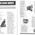Interior del programa de mà del Canet Rock del 1976