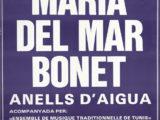 """Cartell del concert """"Anells d'aigua"""" a la Plaça del Rei de Barcelona, estiu 1985"""